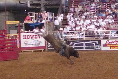 Rodeo alla Resistol Arena (Mesquite, Dallas, TX)